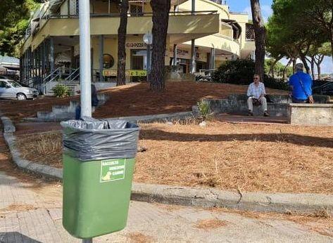 I cani sporcano i parchi: insorgono     cittadini e operatori ecologici
