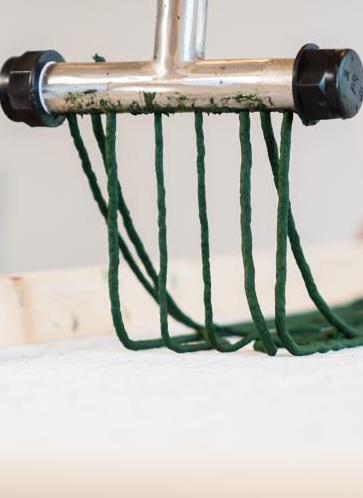 Dalla Puglia arrivano gli spaghetti all'alga spirulina